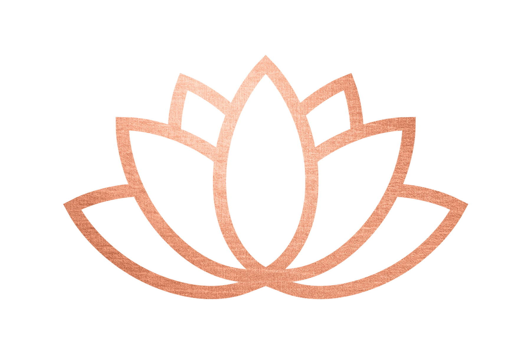 lotus flower Hemsley Organics certified organic vegan cruelty free natural plant-based antioxidants waterless skincare reiki reiki infused cosmetics facial products moisturiser day and night creams highly concentrated wellness wellbeing self care rose water luxury