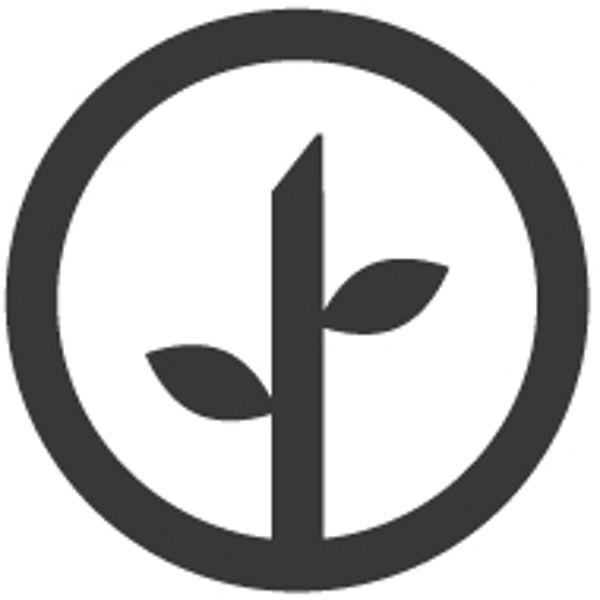 Modern Sprout logo