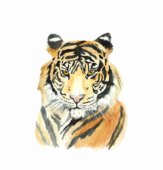 "Постер ""Усатый-полосатый тигр"""