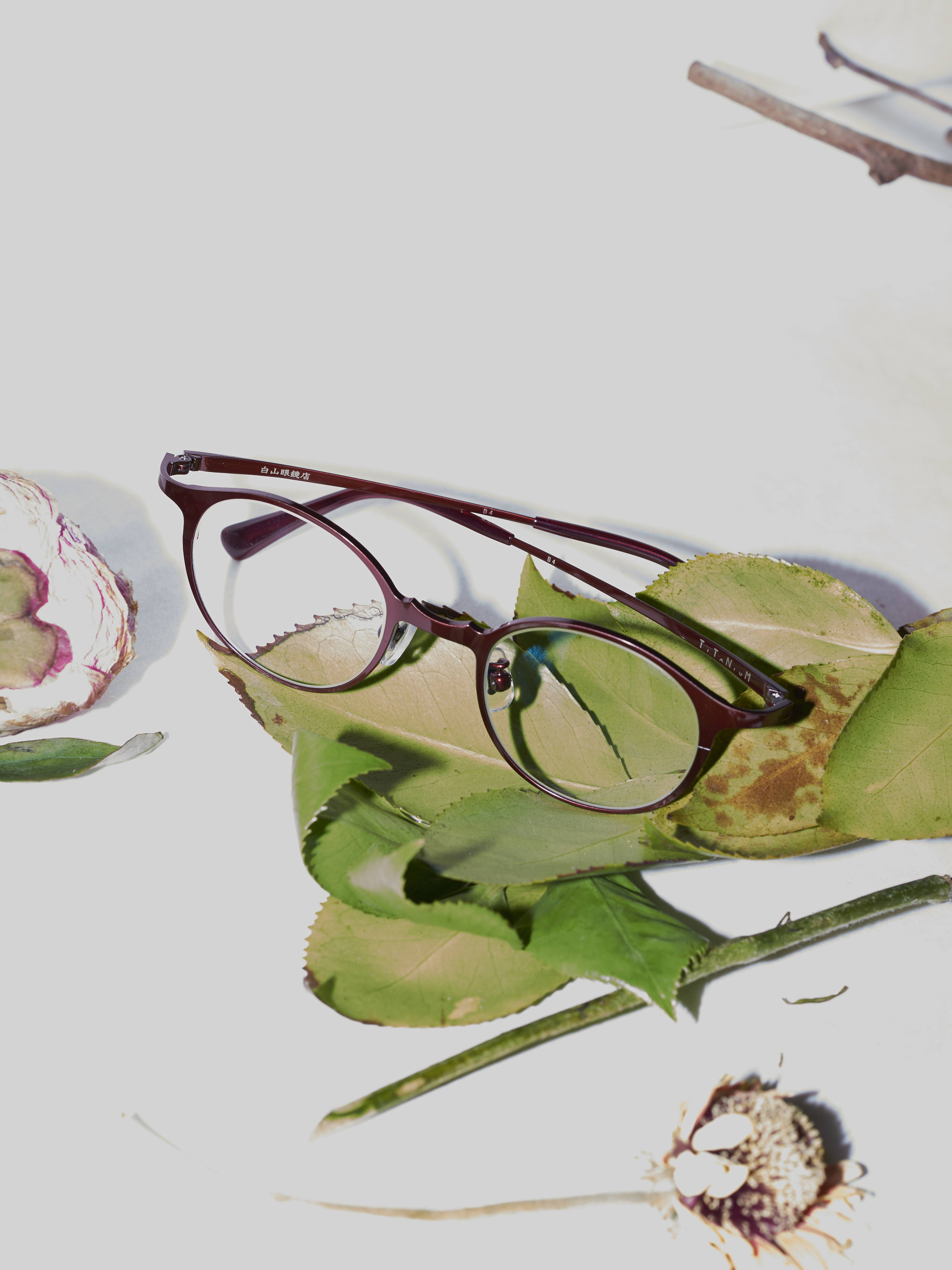 hakusan oxblood panto titanium glasses