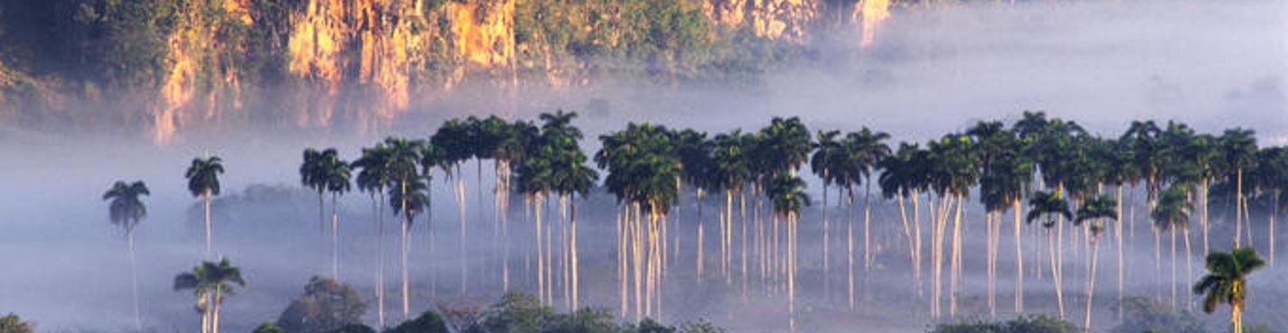Обзорная экскурсия по городу Пинар-дель-Рио, Сороа и долина Виньялес