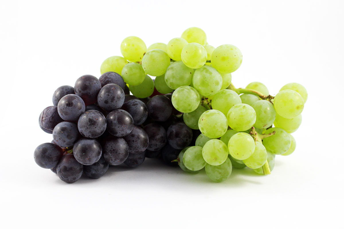 Grapes - Souto Farms Fresh BC Fruit