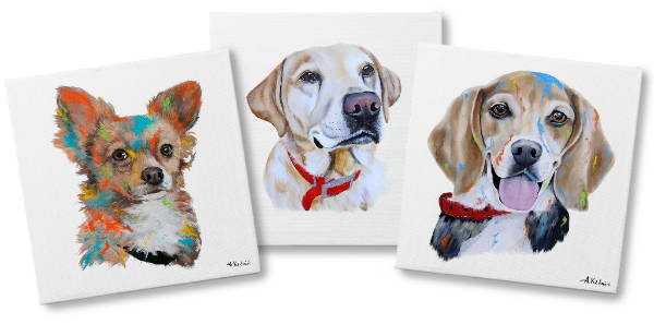 dog portrait - header