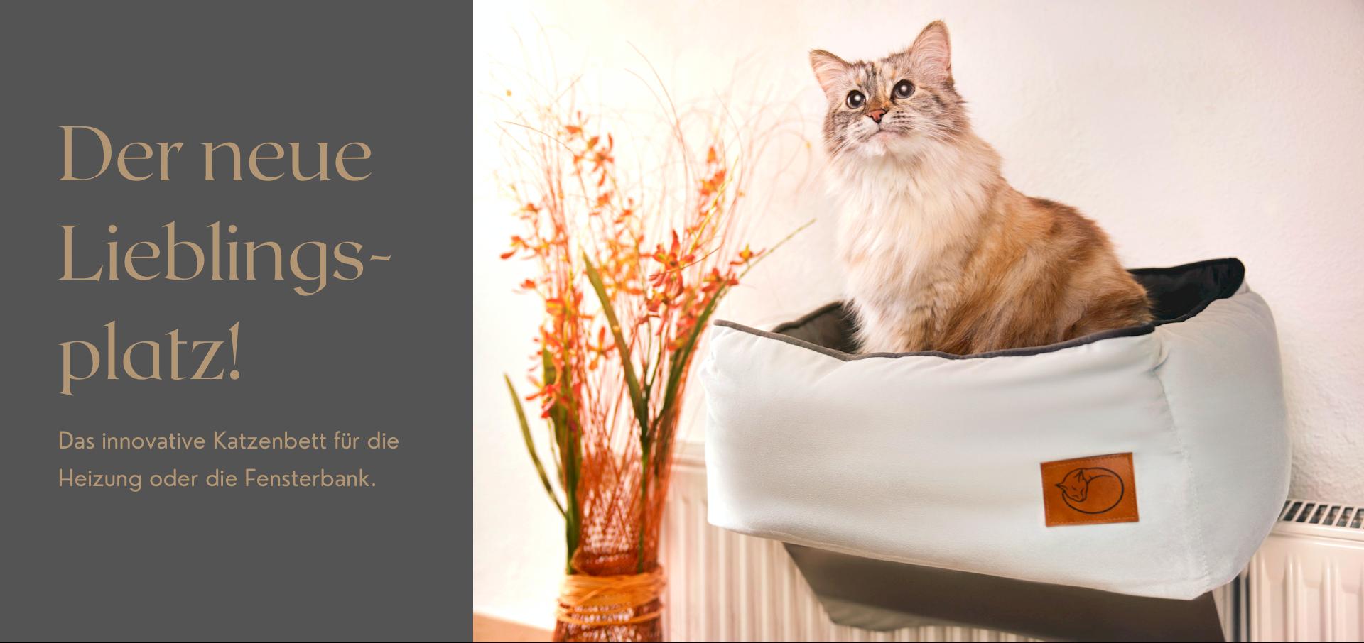 Heizungsliege für Katzen mit Ragdoll