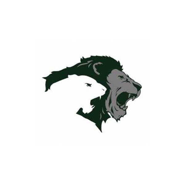Pitman High School PTSA