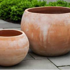 Bowl Planters