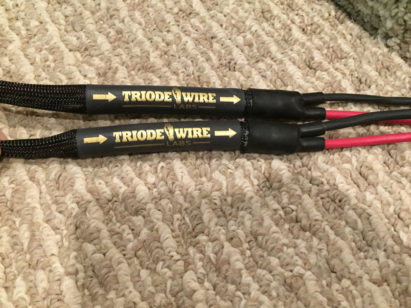 Triode Wire Labs American Speaker Cable 12 feet