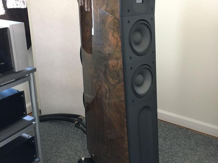 Raidho Acoustics APS D-2.1 CURRENT MODEL
