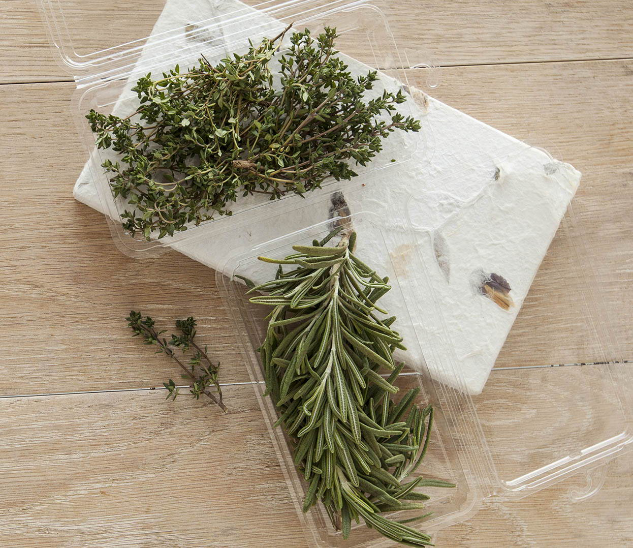 containers for fresh herbs made from biodegradable plant-based material