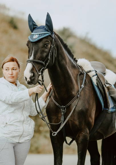 Owner holding black horse with bridle and saddle