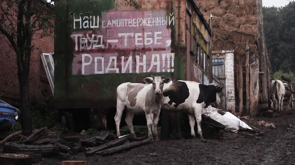 Кинофестиваль «Сталкер», документальный фильм «С.П.А.Р.Т.А.-территория счастья»,Анна Моисеенко