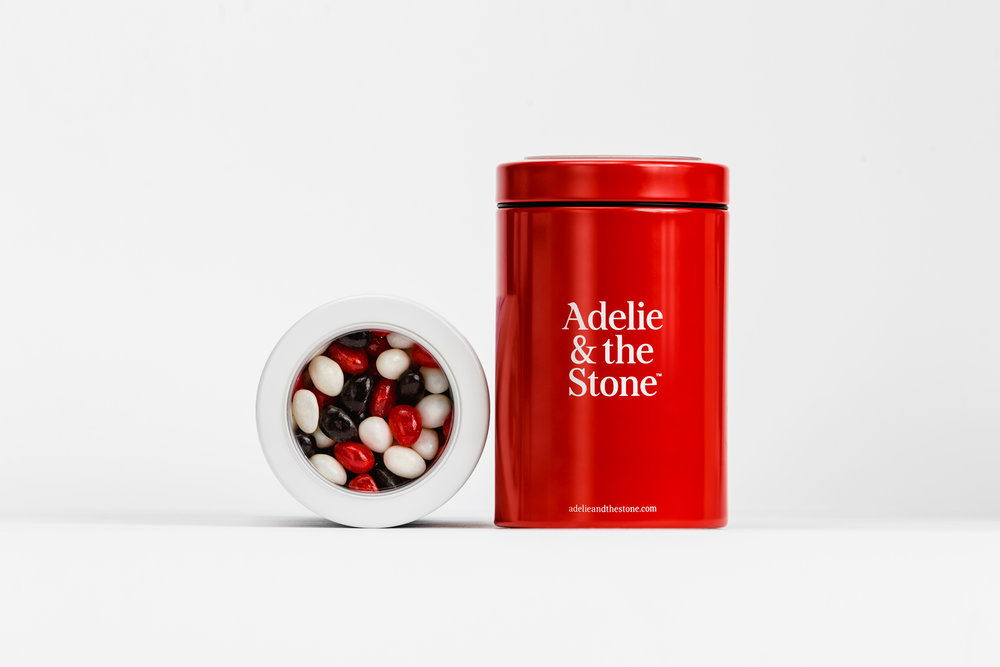 Adelie_and_the_stone_16.jpg
