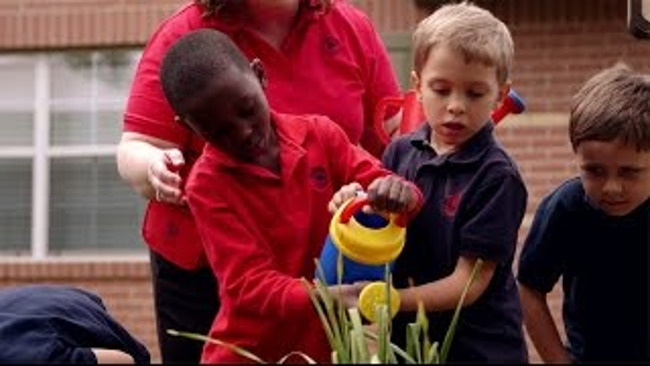 Two young Primrose students water plants together from a watering can in the school garden