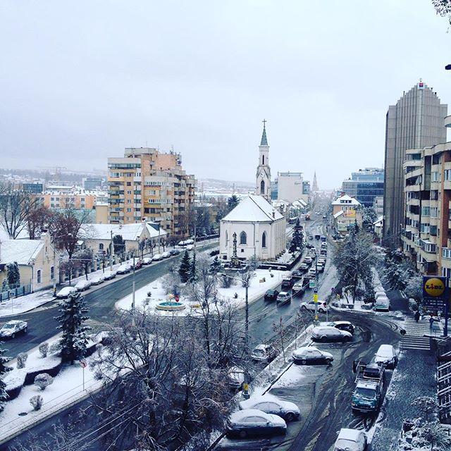 ALEXANDRA RUS.jpg