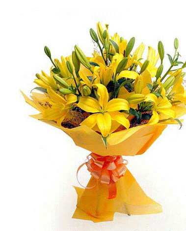 HF Special Yellow lily