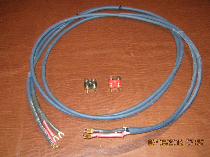 Vandersteen 2CE Speakers / stands and cables