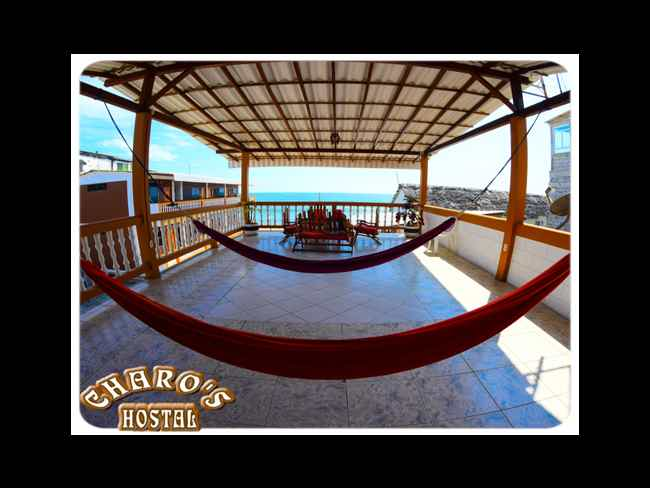 Charo's Hostal ... Excellence in Quality and Service !!-Montañita