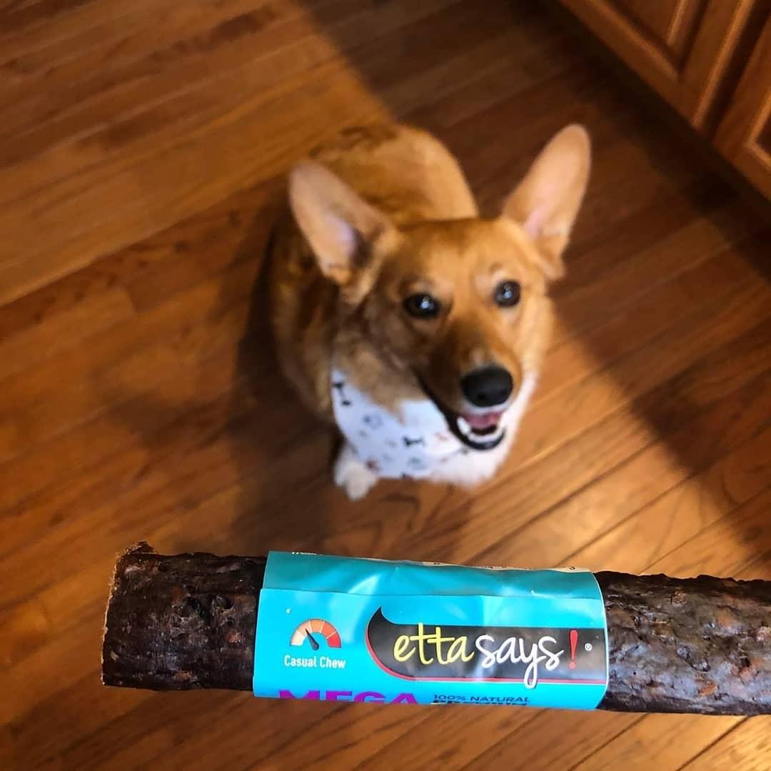 Ettasays dog chew treats
