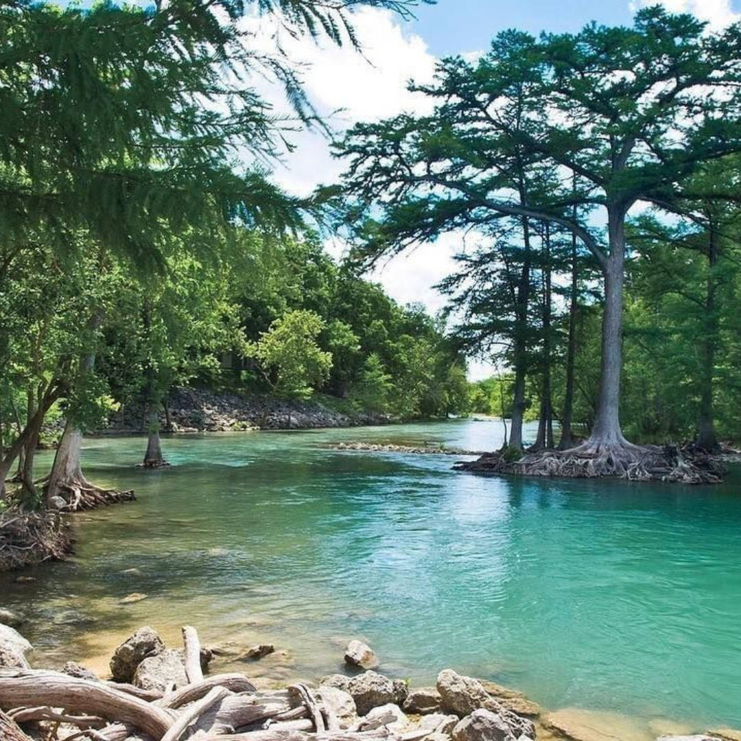 Guadalupe River State Park, Oak Tree Camping Site, Riverside Camping, Texas Parks & Wildlife