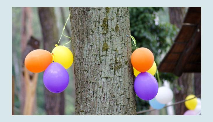 haus natur und umwelt luftballons
