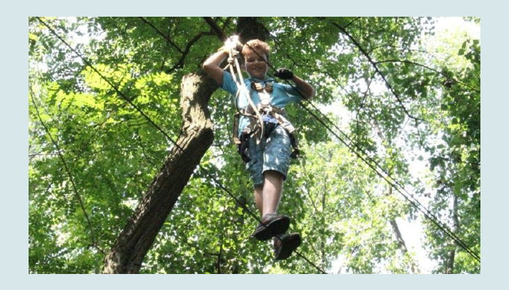 treetree seilbrücke