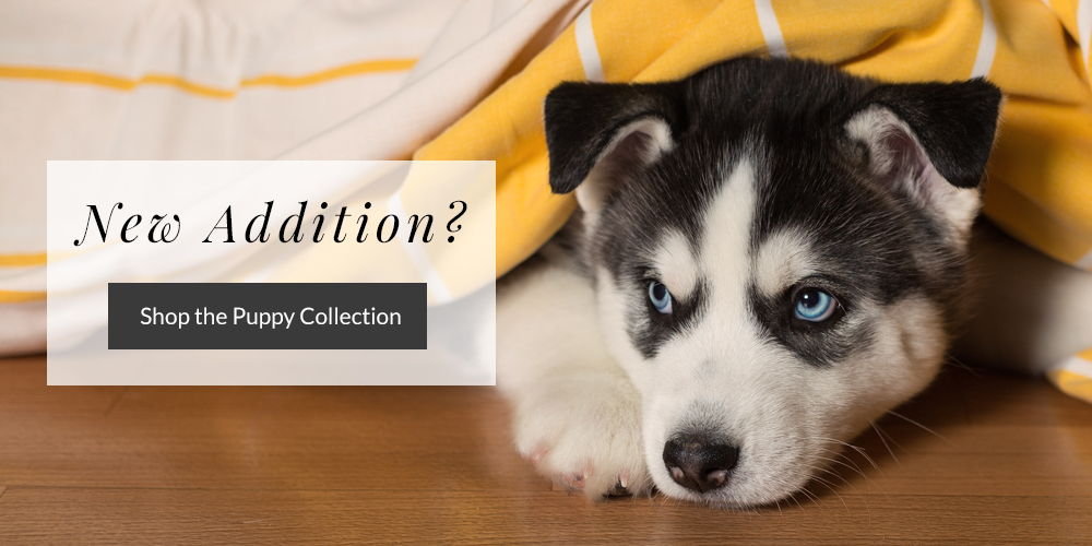 Shop the Puppy Collection