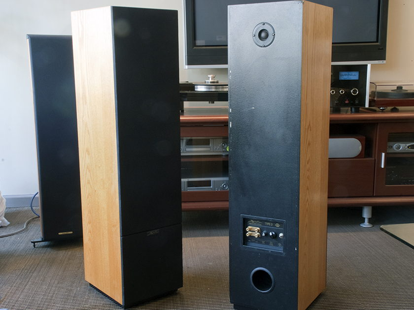 Snell Type D Floorstanding Speakers