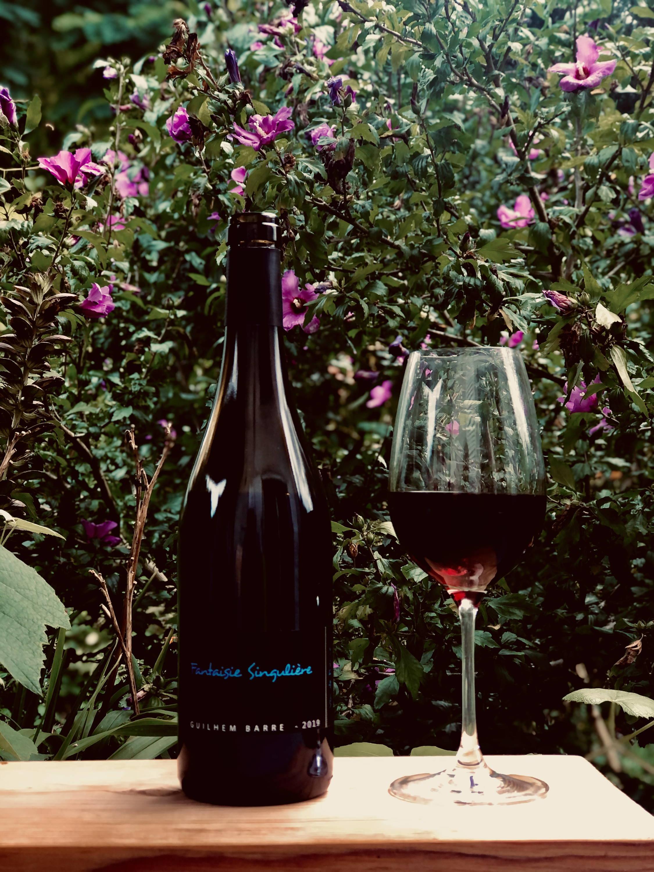fantaisie singulière, guilhem barré, cabardes, languedoc, merlot cabernet,france, vin nature, rawwine, organic wine, vin bio, vin sans intrants, bistro brute, vin rouge, vin blanc, rouge, blanc, nature, vin propre, vigneron, vigneron indépendant, domaine bio, biodynamie, vigneron nature, cave vin naturel, cave vin, caviste, vin biodynamique, bistro brute