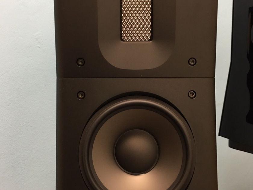 Raidho Acoustics APS D 1.1