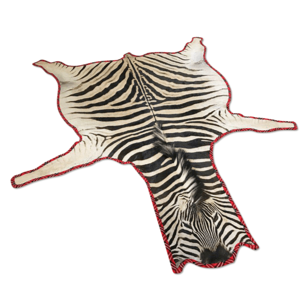 Zebra Hide Rugs Trimmed