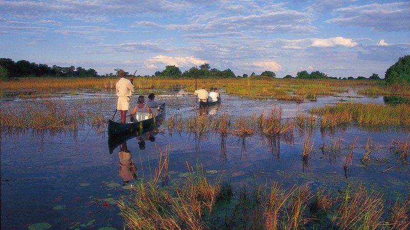 Boat ride on the Okavango Delta, Botswana