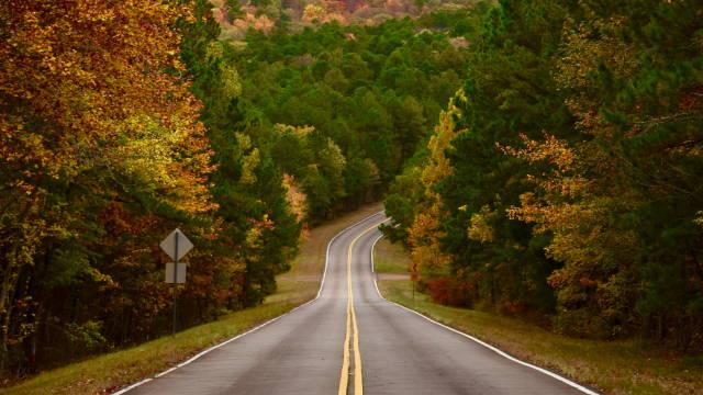 En snoet vej, som symboliserer Sarahs vej ind på aktiemarkedet