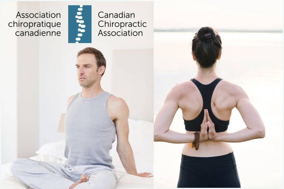 Haven Sleep Co is certified by the Canadian Chiropractic Association. A man and a woman stretching their backs.