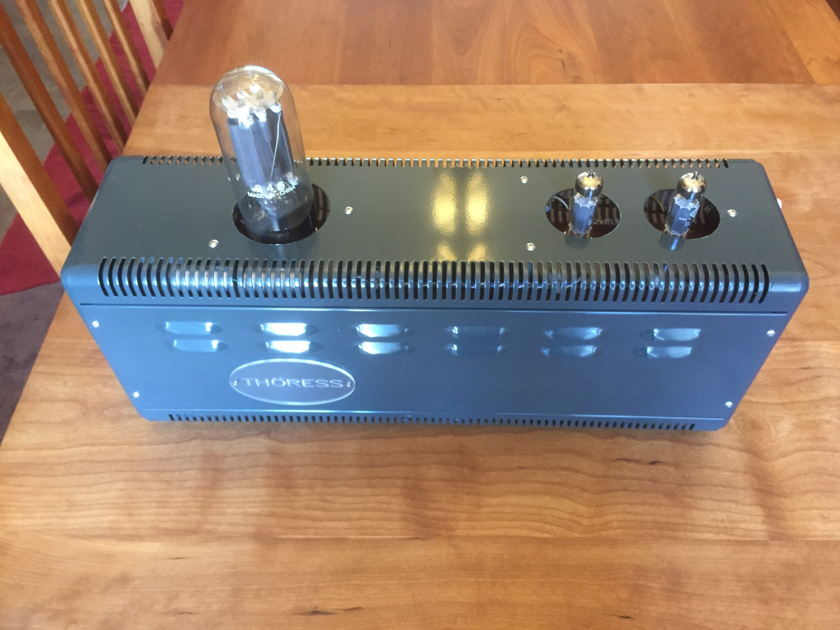 Thoress 845  mono amplifiers