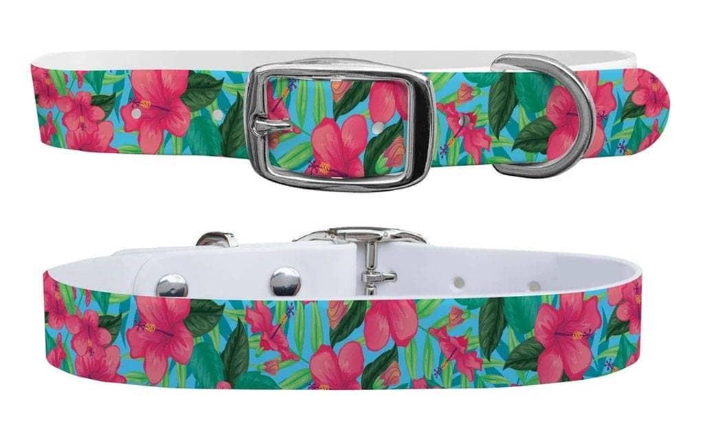 Aloha c4 dog collar