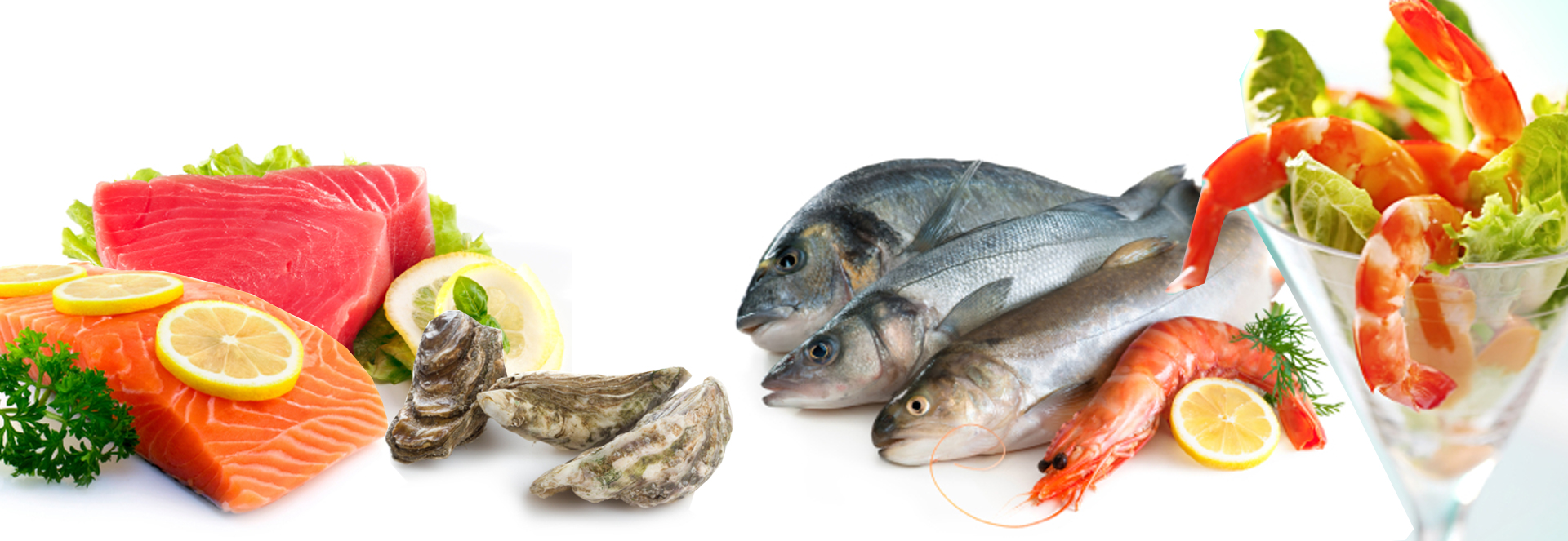 About us seafood online canada for Fresh fish online