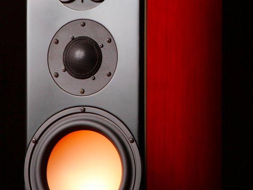 Daber Audio  Montior 3 You choose finish!