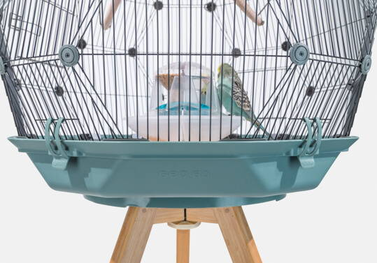 Geo Bird Cage Teal Base