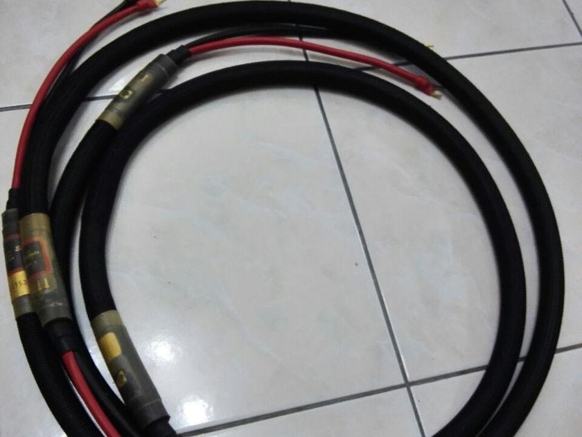 PAD Purist Audio Design  Elementa Rev.A  Speakers Cable