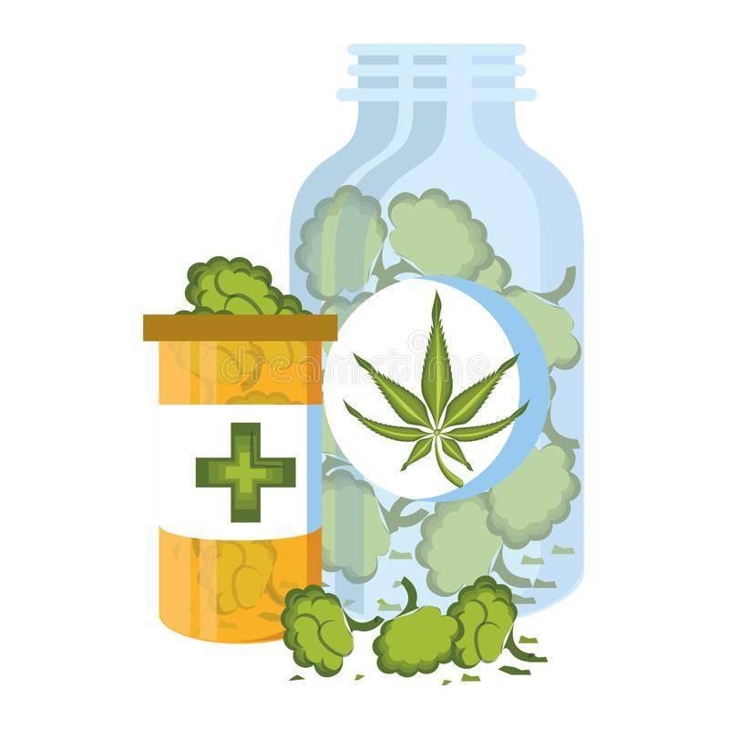purchase cannabis oil nz