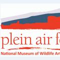Plein Air Fest, Etc.