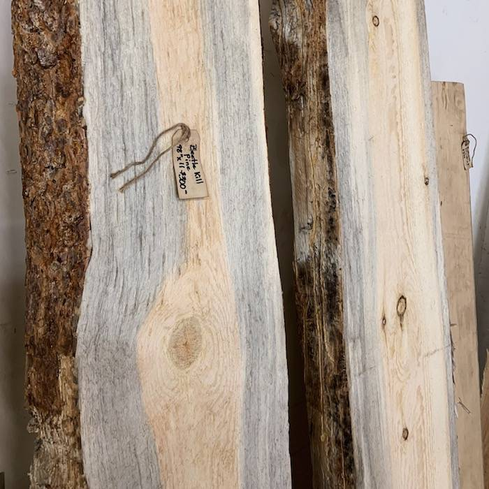 Side view of live edge beetle kill pine slabs with blue stain