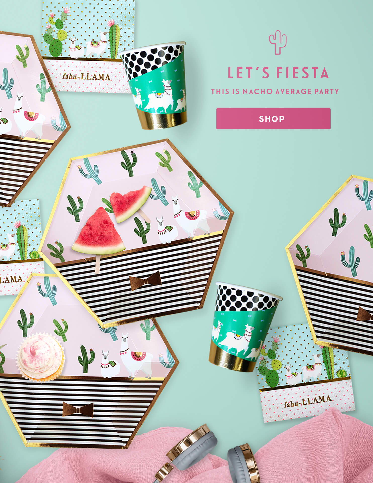 Fiesta Theme Party Supplies, Cactus Party Decor, Llama Birthday