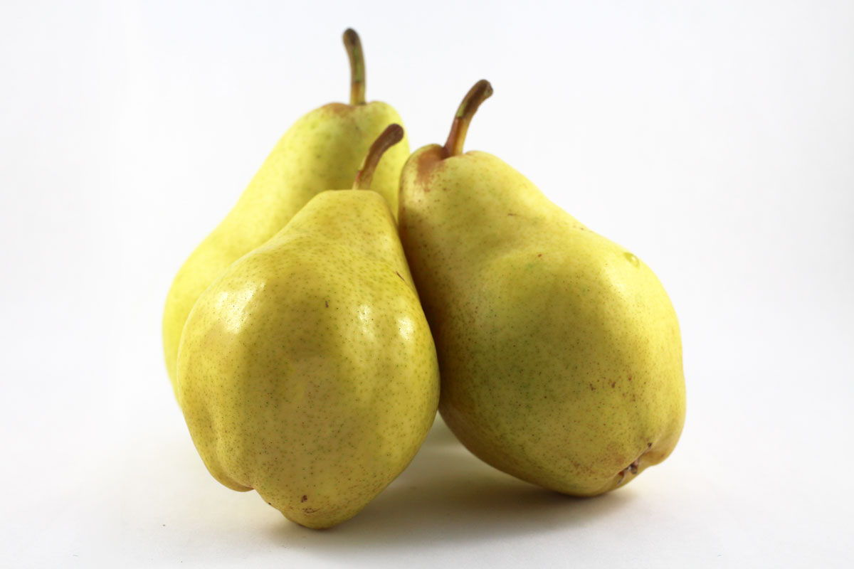 Bartlett Pear - Souto Farms Fresh BC Fruit