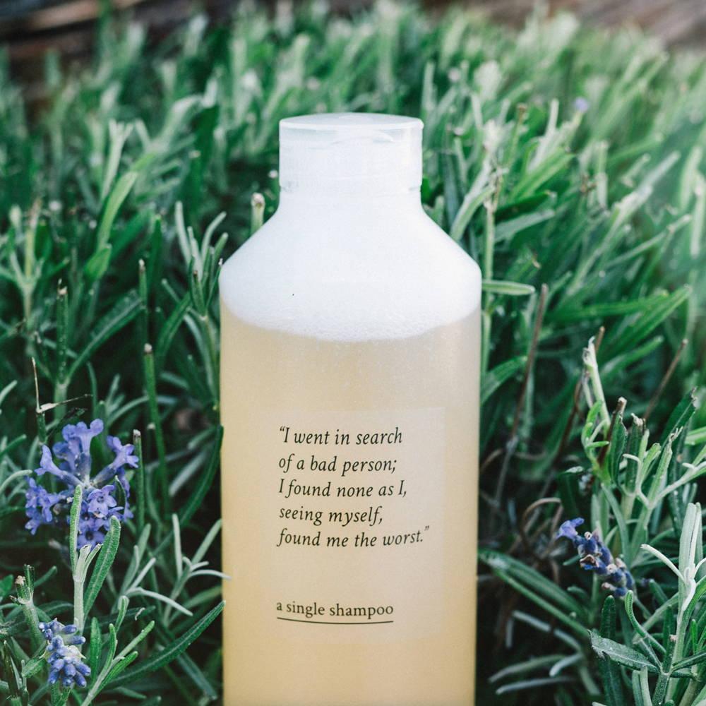 image of davines a single shampoo in grass