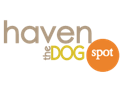 4 Days of Doggy Daycare at Haven the Dog