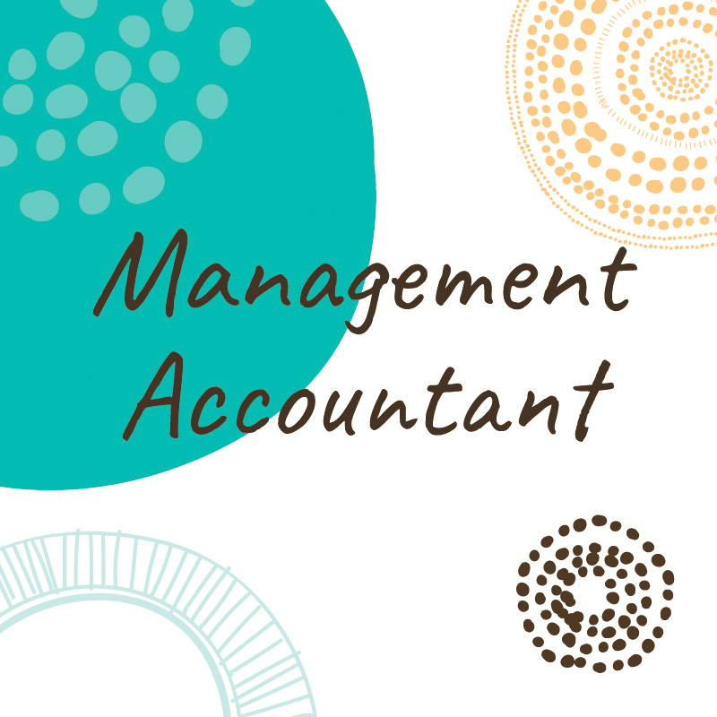 management accountant job