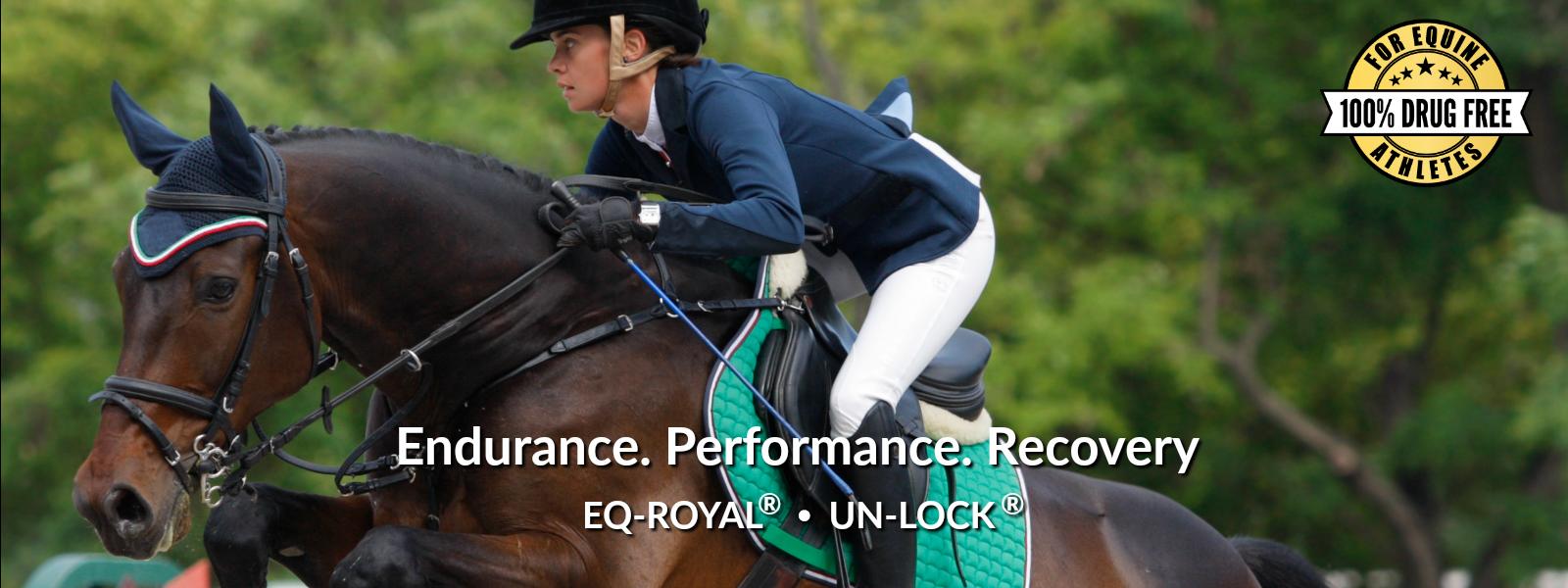 EQ-ROYAL and UN-Lock horse supplements