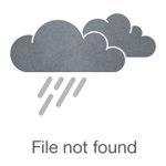 Балагурова Ольга
