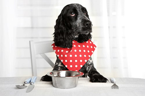 Image for Sharing Table Scraps